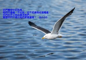 AA_0026 6章25