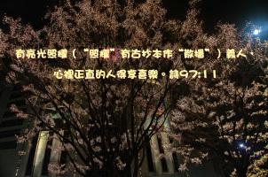 AA_0048 詩97章11