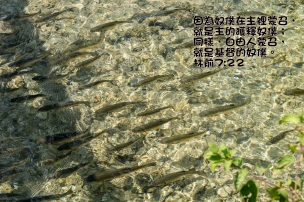 AA_0090 林前7章22
