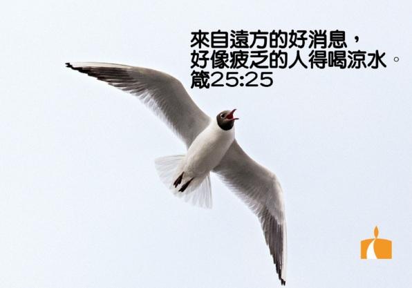 AA_0120 箴25章25