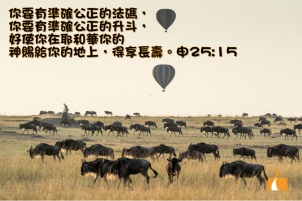 AA_0170 申25章15