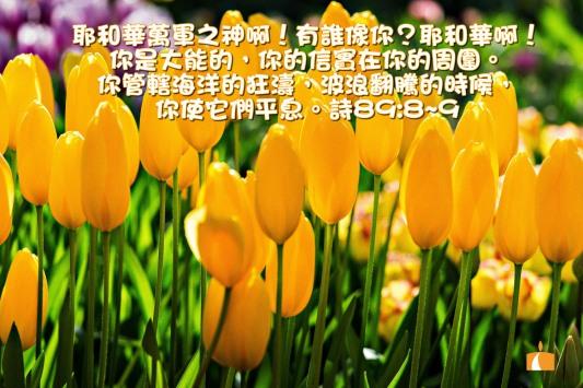 AA_0221 詩89章8-9