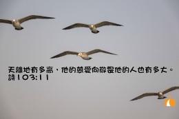 AA_0231 詩103章11