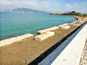 東涌生態海岸線